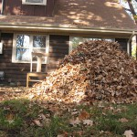 Leaf piles: an unassuming safety threat