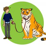 When to protect your property from wild animals